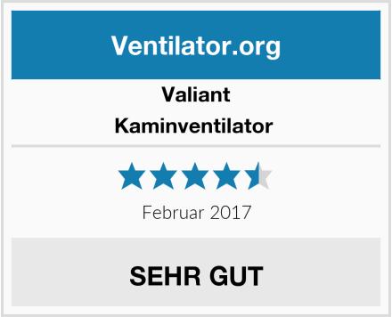 Valiant Kaminventilator  Test