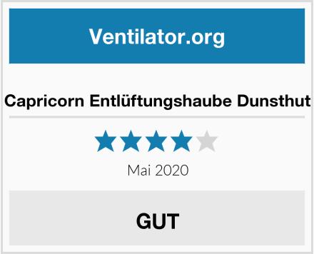 No Name Capricorn Entlüftungshaube Dunsthut Test